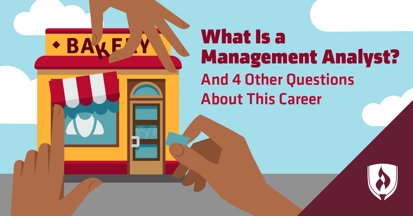 What is a management analyst?
