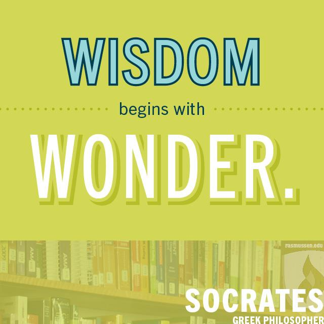 Wisdom begins with wonder. - Socrates, Greek philosopher