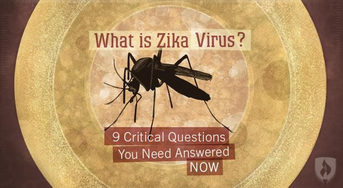 What is Zika Virus