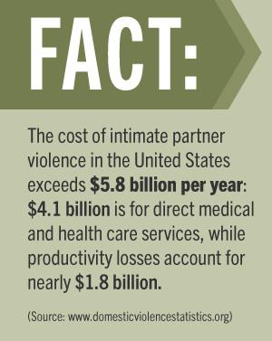 Fact on domestic violence