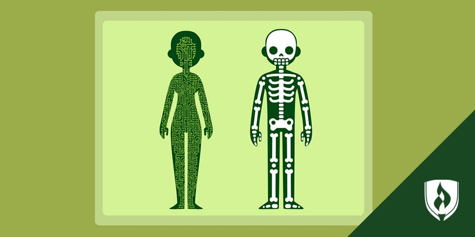 illustrations of a female body and skeleton