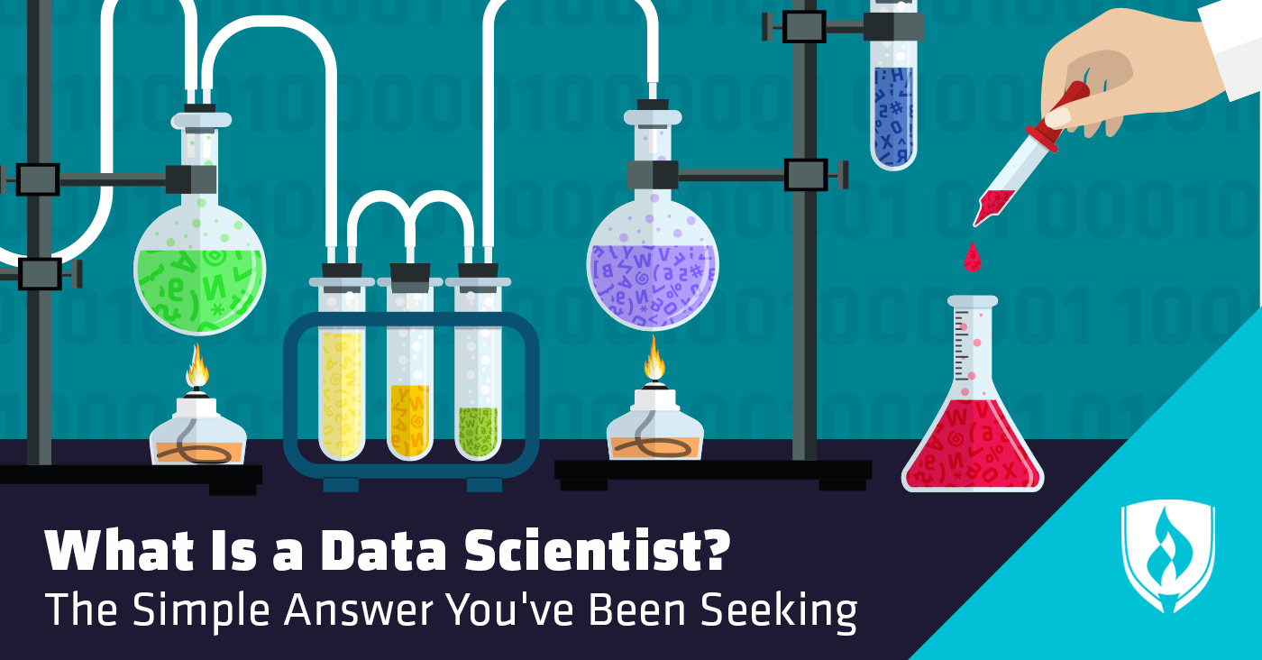 what is data scientist