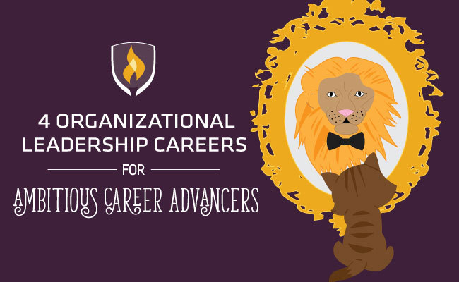 4 Organizational Leadership Careers for Ambitious Career Advancers