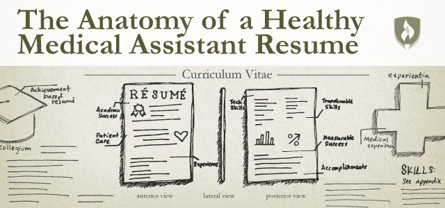 the anatomy of a healthy assistant resume