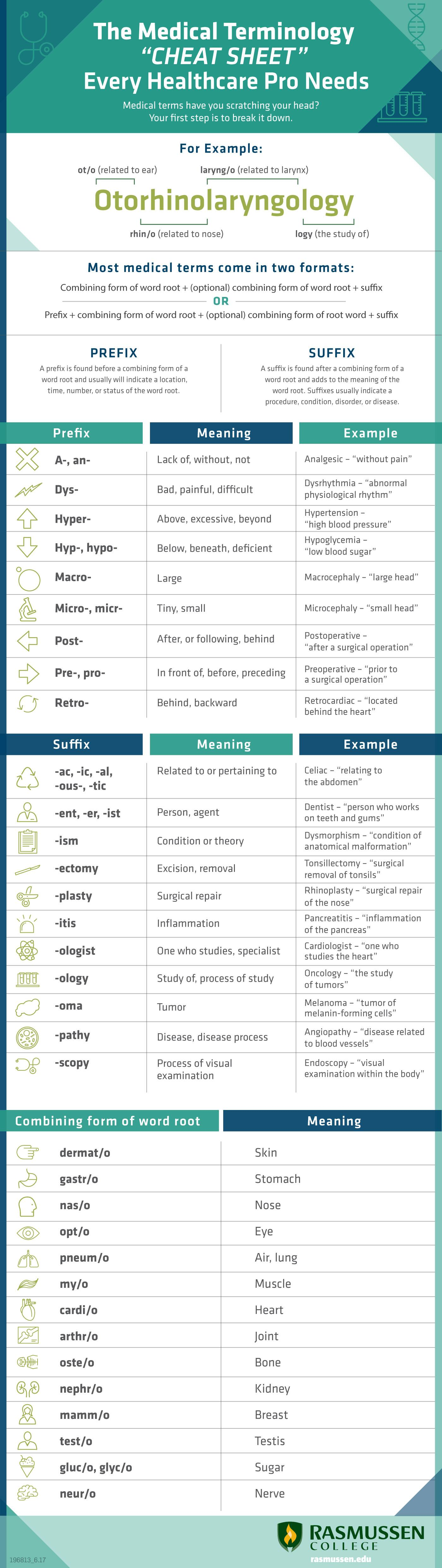 worksheet Medical Terminology Worksheet the medical terminology every healthcare pro needs infographic