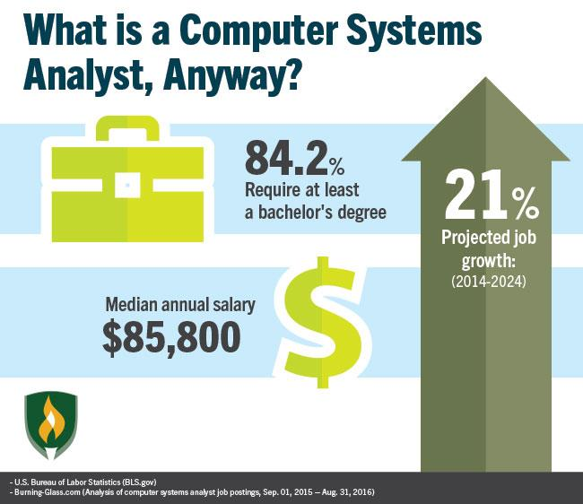 a career description a computer systems analyst 18) supervise computer programmers or other systems analysts or serve as project leaders for particular systems projects 19) utilize the computer in the analysis and solution of business problems such as development of integrated production and inventory control and cost analysis systems.